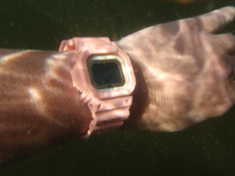 Name:  GLX salmon swim 2.jpg Views: 86 Size:  31.7 KB