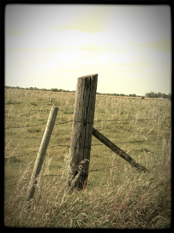 Name:  The+Fence+Post.jpg