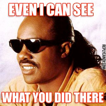 Name:  Stevie-Wonder-Even-I-Can-See-What-You-Did-There.jpg Views: 157 Size:  43.6 KB