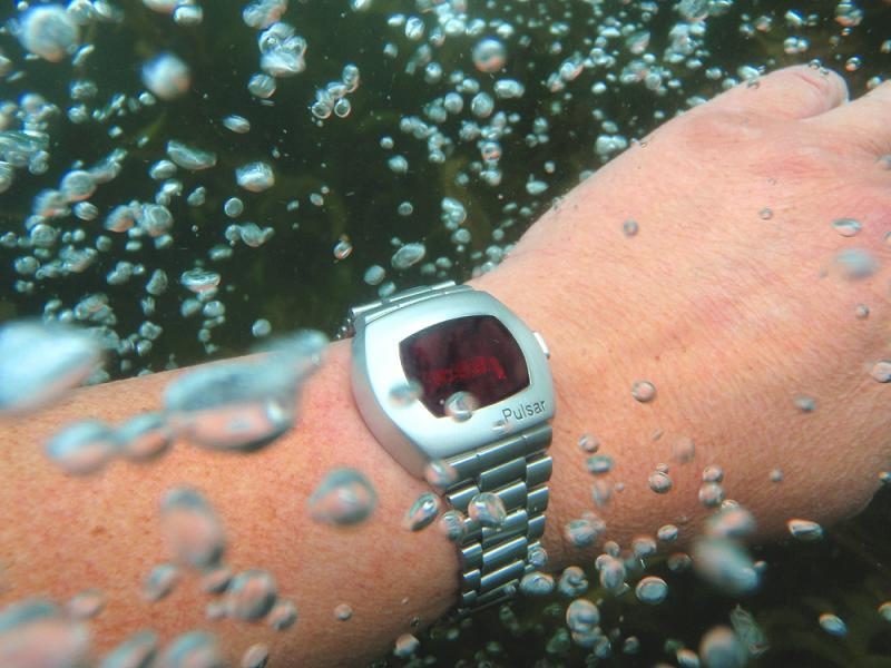 Name:  P2 swim 1.jpg Views: 130 Size:  65.2 KB
