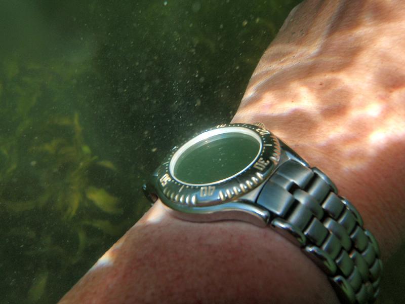 Name:  SeaWolf swim 1.jpg Views: 69 Size:  49.2 KB
