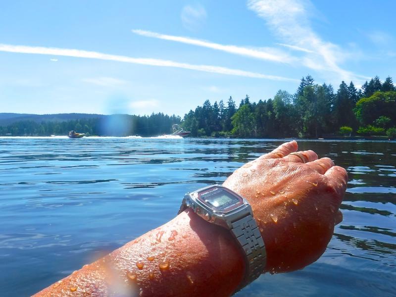 Name:  DW1000 lake3.jpg Views: 71 Size:  64.4 KB