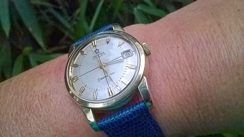 Name:  Seamaster5.jpg