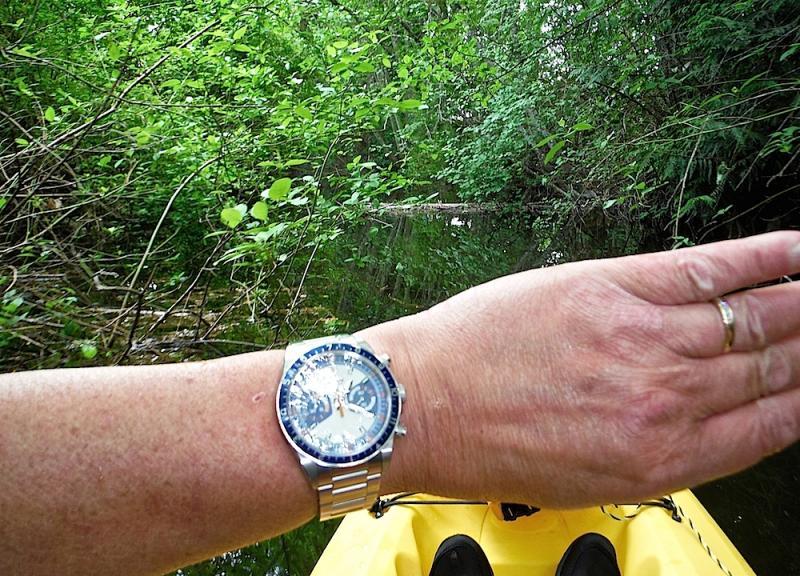 Name:  Creek Tudor.jpg Views: 136 Size:  125.6 KB