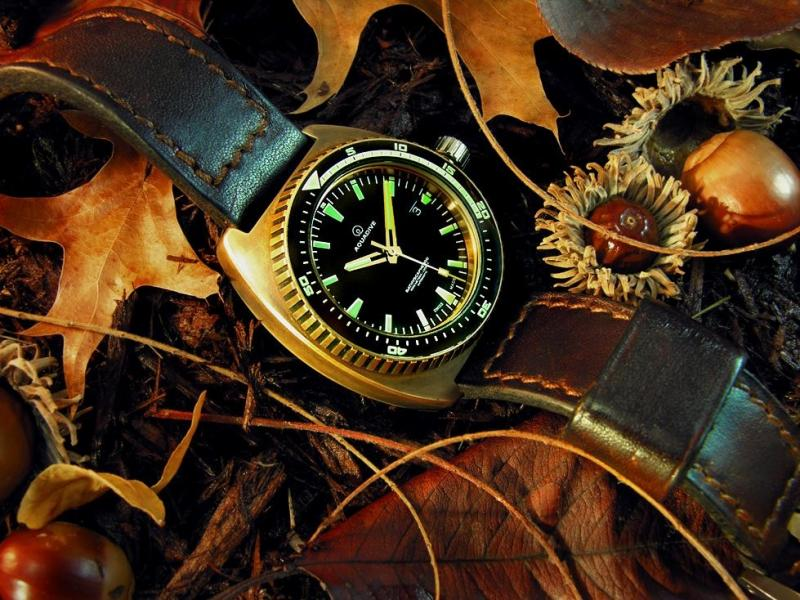 Name:  30919-chase-albums-chase-misc-picture42234-aquadive-bathyscaphe-bronze.jpg Views: 125 Size:  98.1 KB