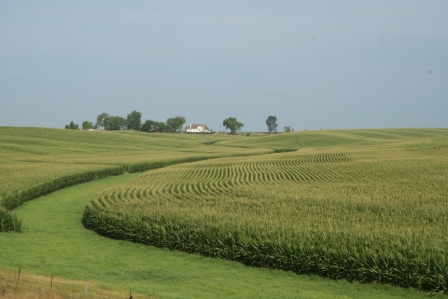 Name:  Iowa-Corn-Fields-from-Third-Heaven-Ranch.png
