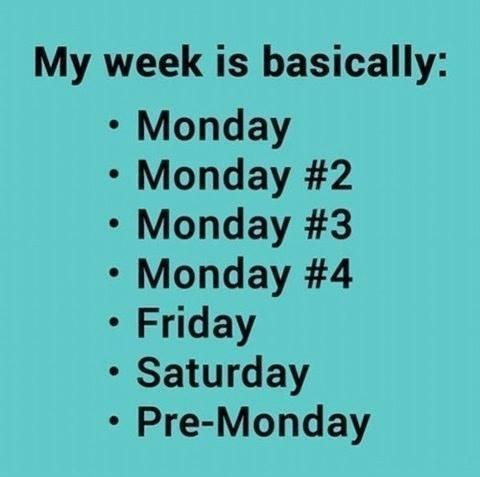 Name:  my-week.jpeg Views: 46 Size:  21.6 KB