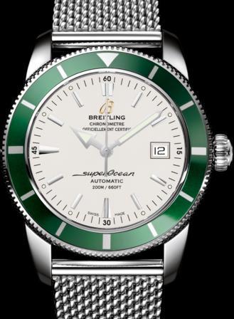 Name:  superocean-42-green.jpg Views: 122 Size:  28.5 KB