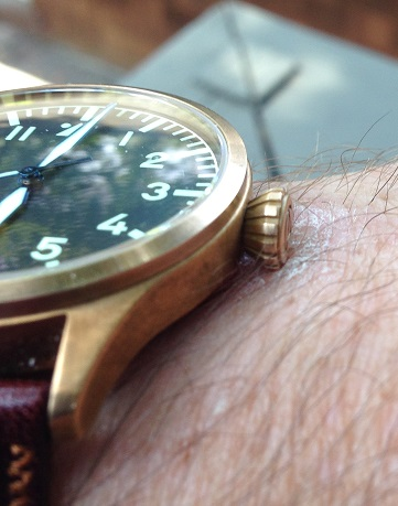 Name:  Culprit_small.JPG