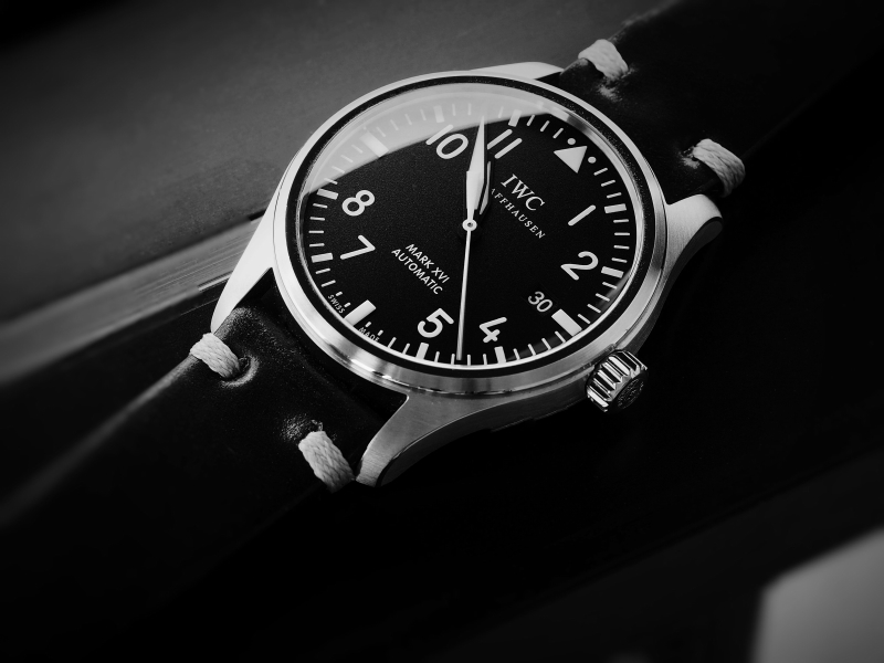Name:  IWC_XVI_28.JPG